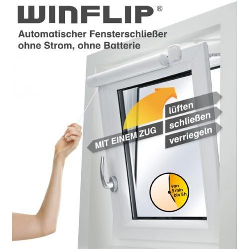 WinFlip