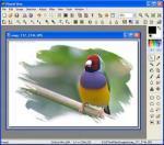 PhotoFiltre X 10.3.1 � Descarregar, Download, Baixar 10.3.1